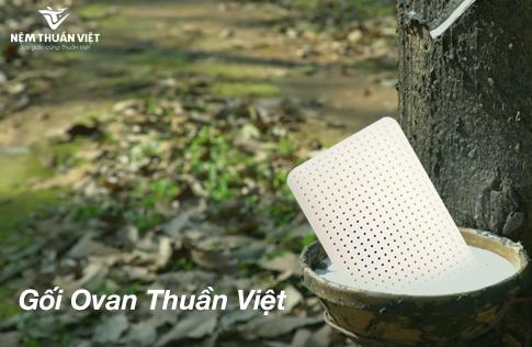Gối Ovan Thuần Việt