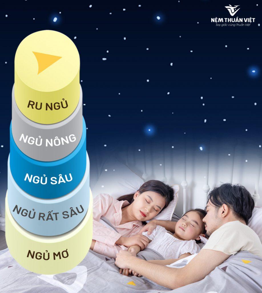 các giai đoạn của giấc ngủ