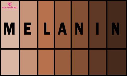 Melanin là gì