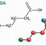 GABA chất ức chế dẫn truyền thần kinh