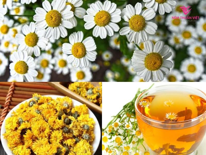 thực phẩm thức uống trị mất ngủ, trà hoa cúc