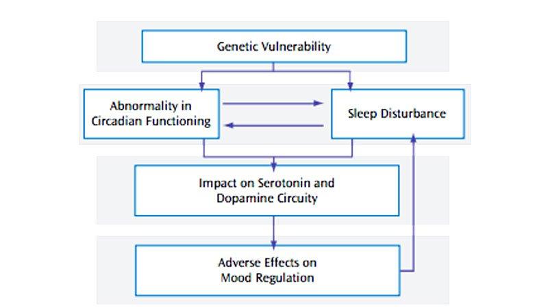 biểu đồ giữa chứng rối loạn lưỡng cực và giấc ngủ