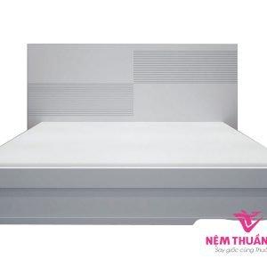 Giường Ngủ Hiện Đại Giá Rẻ MDF Sơn Trắng